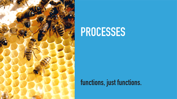 Processes / Bees